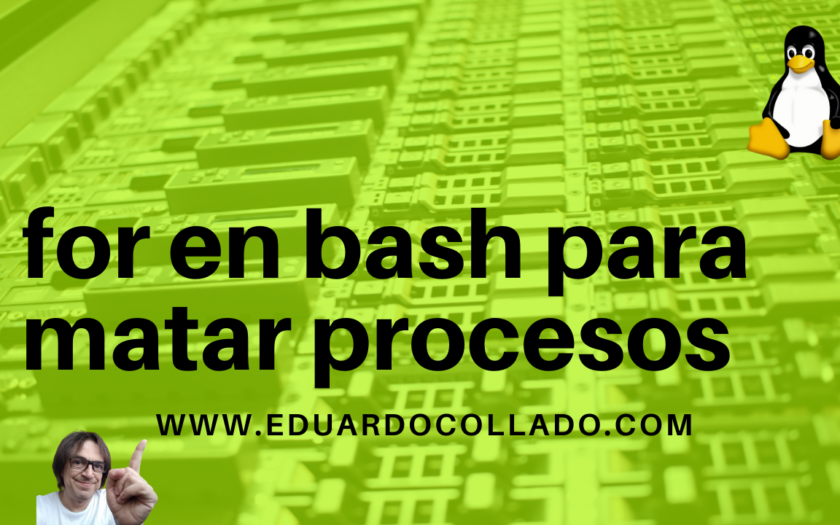 For en bash para matar procesos